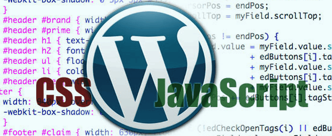 wp-css-javascript