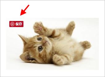 画像ホバー時の Pinterest 保存ボタン